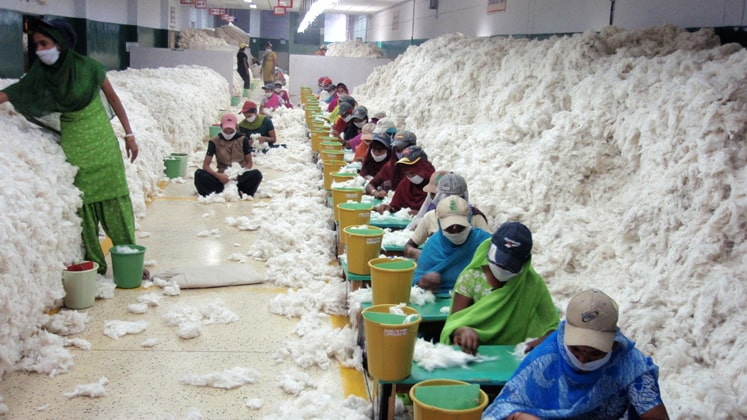 Indian cotton exports continue to slump!